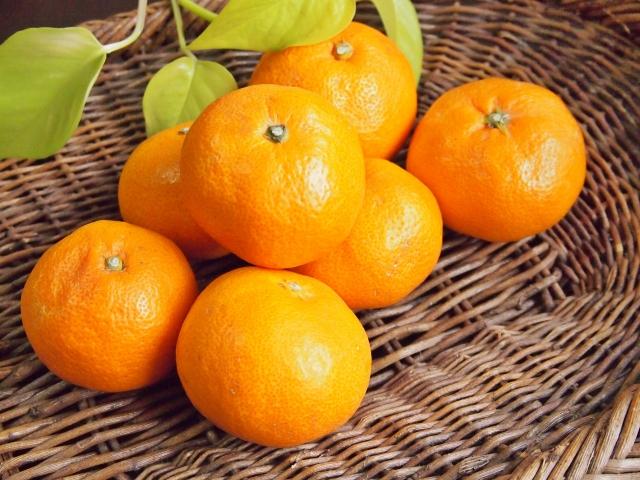 オレンジとミカンの法則